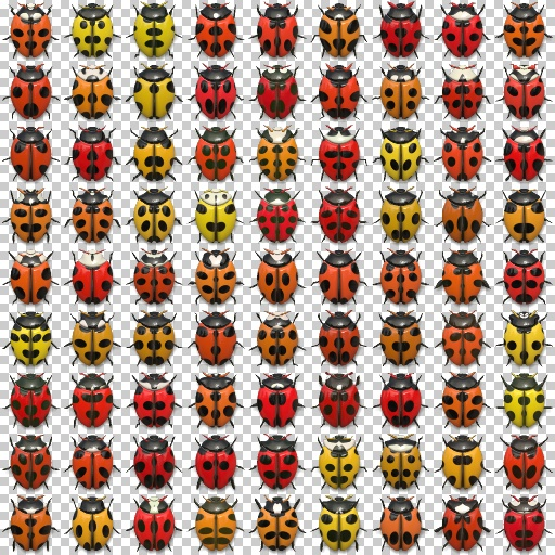 Beetle collection (Texture)